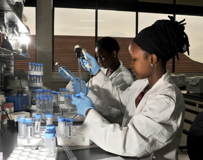 Women working in the advanced animal health laboratories of ILRI, in Nairobi