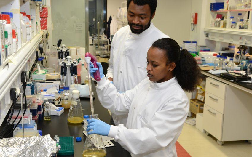 Ruth Bekele & Alewo idoko-Akoh in the lab