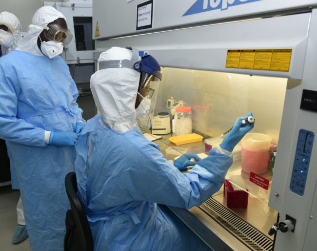 Scientists preparing samples in biosafety level III facilities at ILRI laboratory (photo credit ILRI/Paul Karaimu)